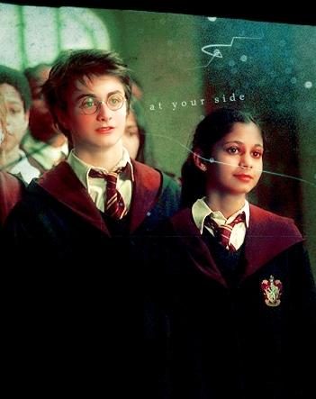 Harry/Parvati