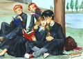 Harry Potter's Women - harry-potters-women photo