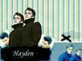Hayden achtergrond
