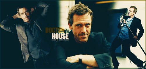 House M.D. wolpeyper containing a konsiyerto called Hugh Laurie