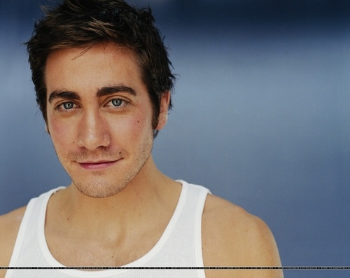 Jake Gyllenhaal wallpaper containing a portrait titled Jake