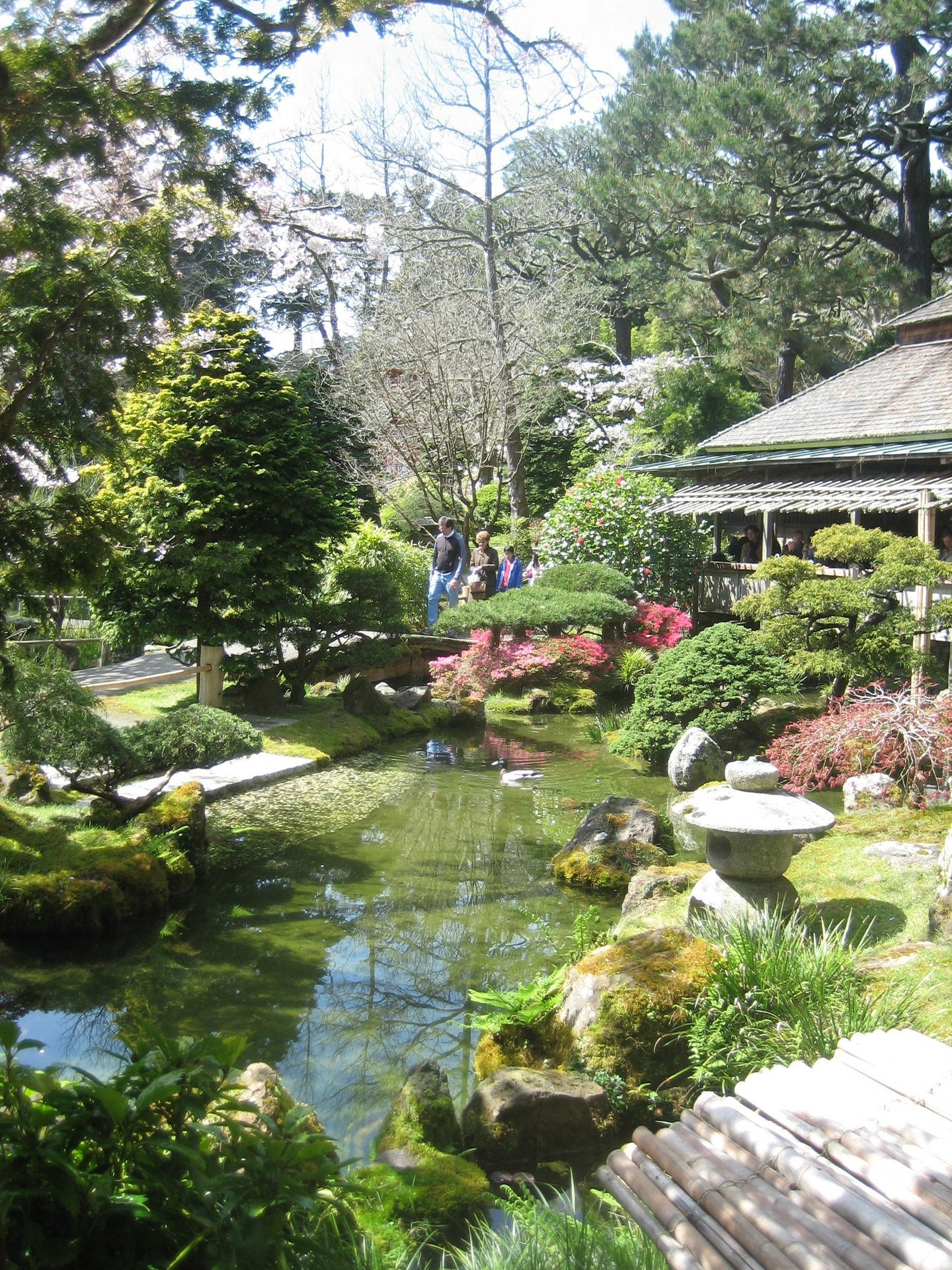 San francisco images japanese tea garden hd wallpaper and - Japanese tea garden san francisco ...