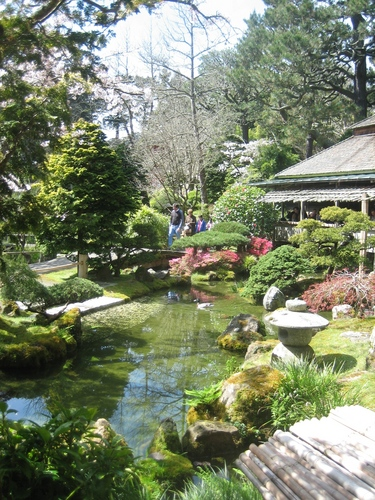 San francisco images japanese tea garden hd wallpaper and for Koi pond japanese tea garden san francisco