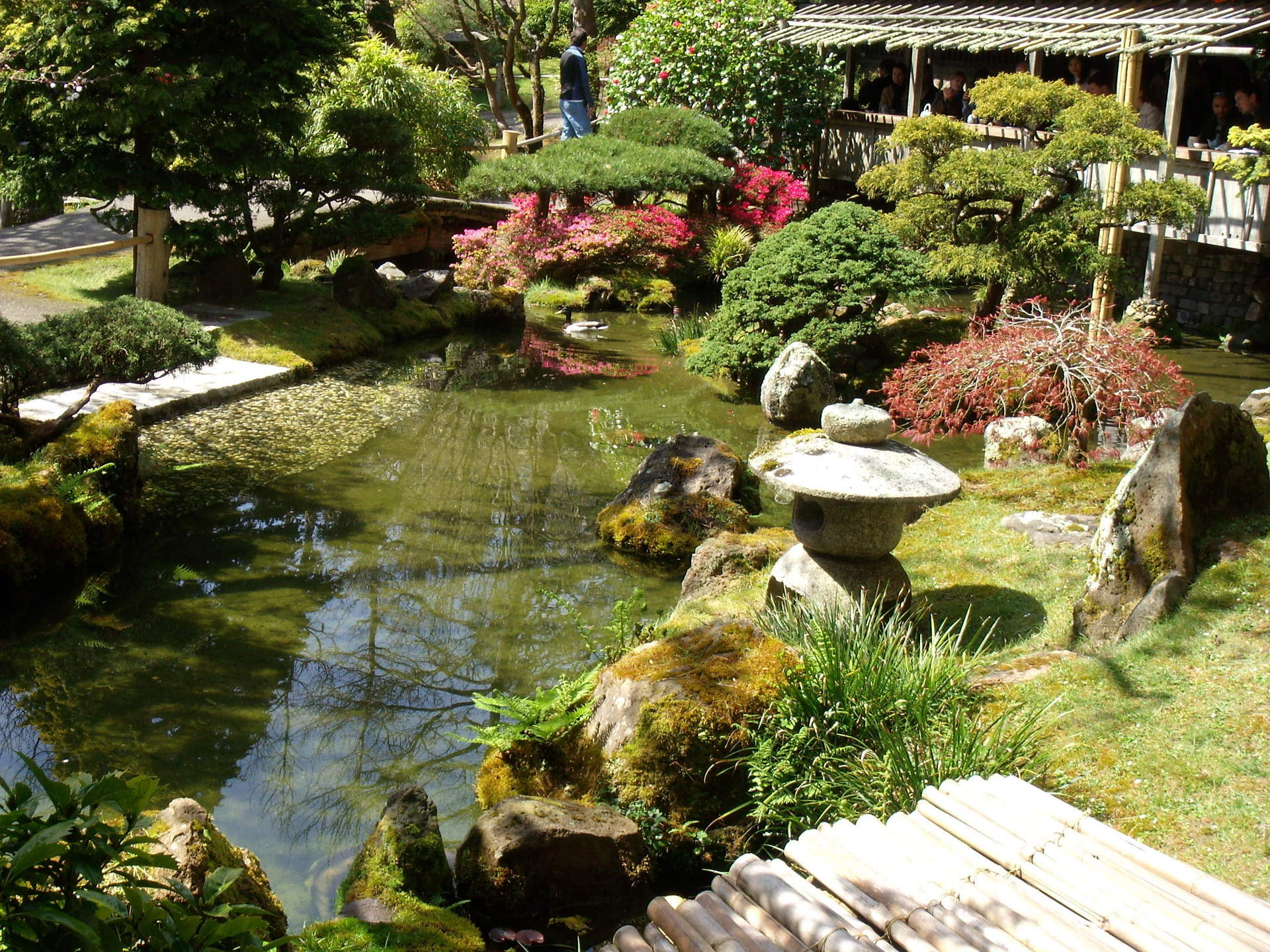 San francisco images japanese tea garden hd wallpaper and for Japanese tea garden design