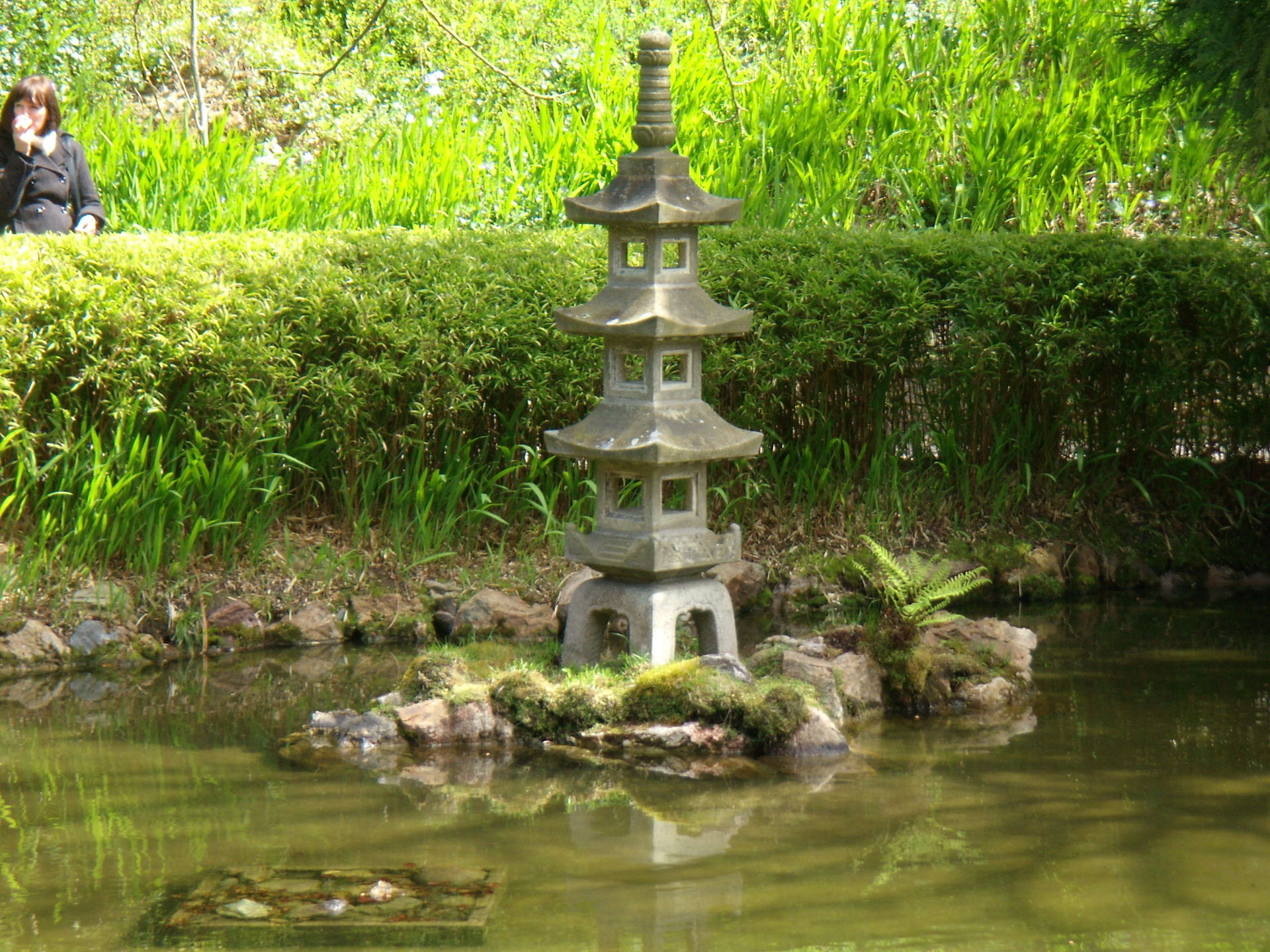 San Francisco Images Japanese Tea Garden Hd Wallpaper And Background Photos 962257