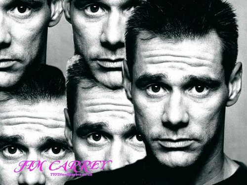 Jim Carrey wallpaper probably containing a portrait titled Jim