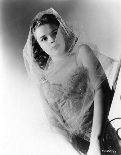 Judy Garland kertas dinding entitled Judy