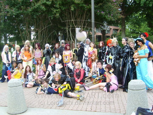 Kingdom Hearts Huge Group Foto