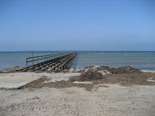 Lill-Olas pantai