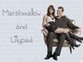 Lilypad & Marshmallow