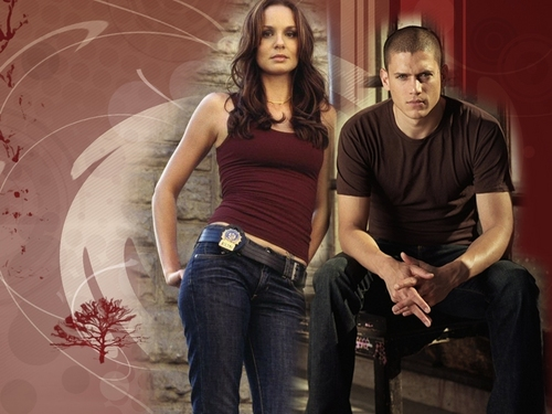 Michael and Sara wallpaper titled Amore of Prison Break