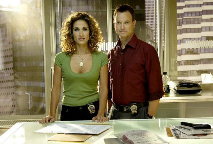 CSI:NY پیپر وال possibly containing a sign, a living room, and a چولی, براسری titled Mac and Stella