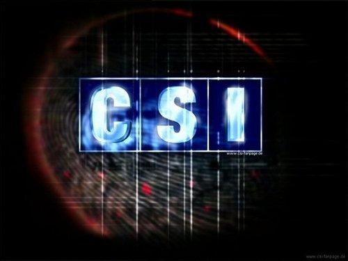 Marg Helgenberger/CSI