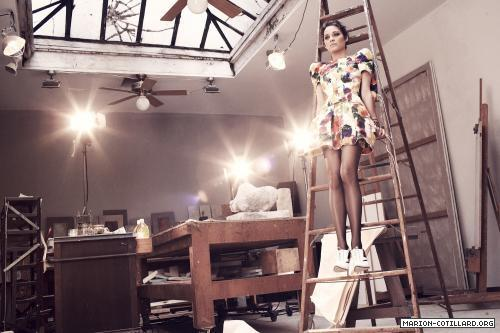 Marion Cotillard wallpaper possibly containing a living room, a drawing room, and a dressing table entitled Marion Cotillard
