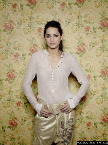 Marion Cotillard wallpaper called Marion Cotillard