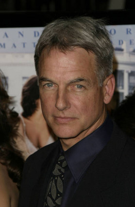 mark harmon angie harmon related