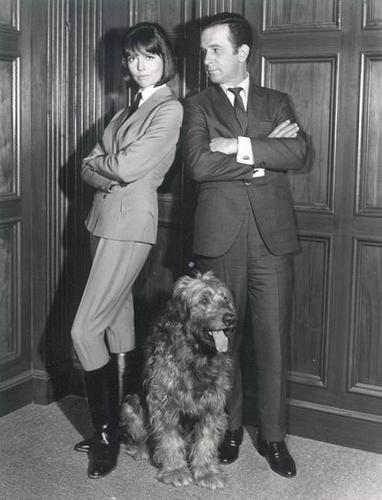 Max & Agent 99 (Get Smart)