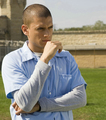 Michael  - michael-scofield photo