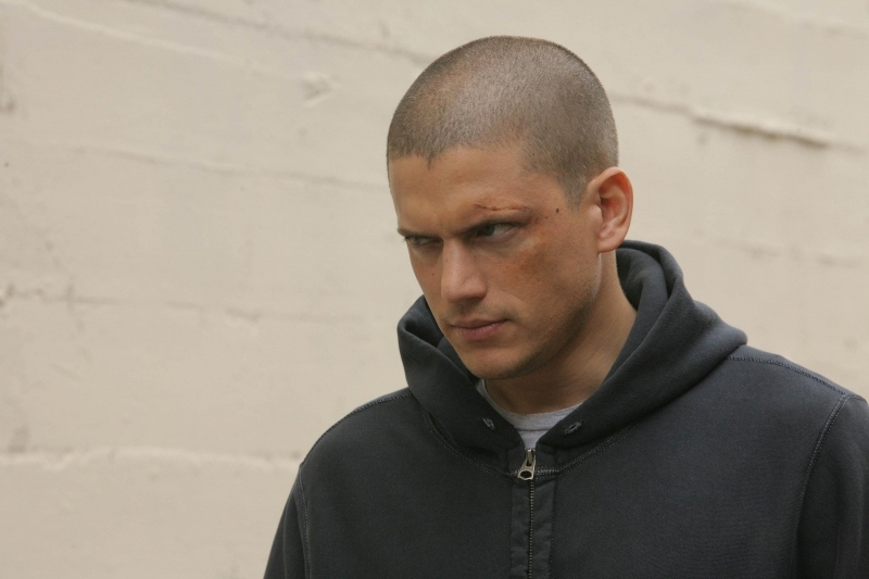 Michael Scofield images Michael HD wallpaper and background photos (997138)