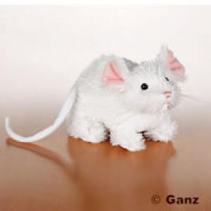Mouse Webkinz Plush - webkinz Photo