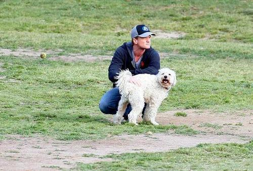 NPH with doggies - neil-patrick-harris Photo