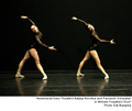 Nederlands Dans Theater - ballet photo