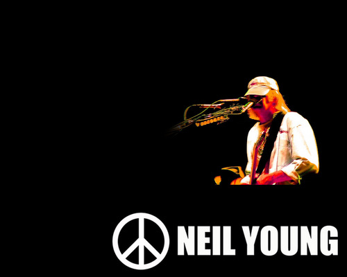Neil Young দেওয়ালপত্র containing a সঙ্গীতানুষ্ঠান called Neil Young