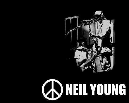 Neil Young wallpaper possibly with a sign called Neil Young