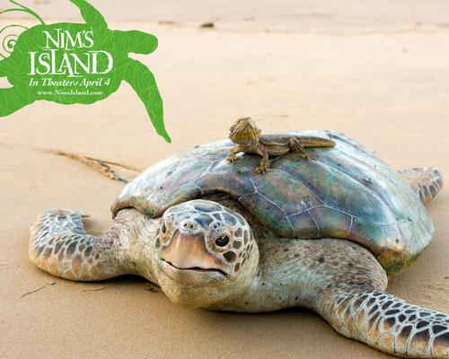 Nim`s Island