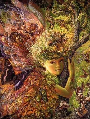 Oak Fairy - fairies Photo