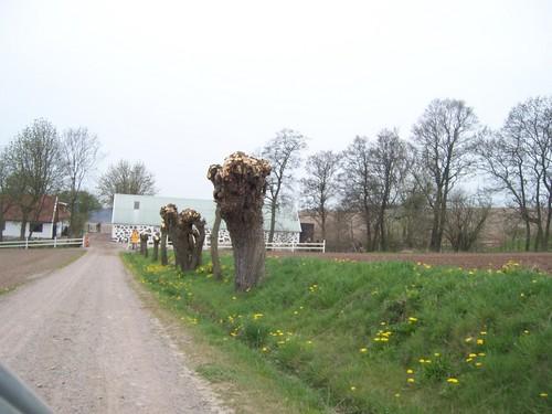 Outside Tågarp - Skåne