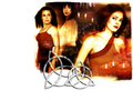 Paige, Piper , Phoebe - the-girls-of-charmed wallpaper