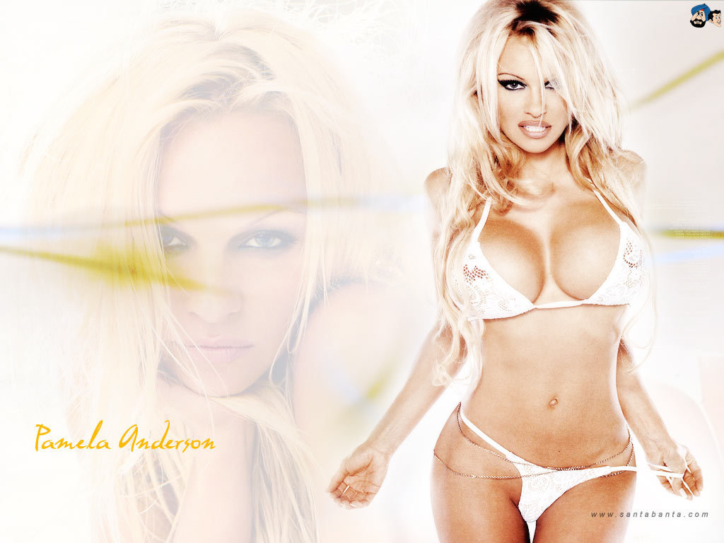 Pamela Anderson images Pamela Anderson HD wallpaper and background ... Pamela Anderson