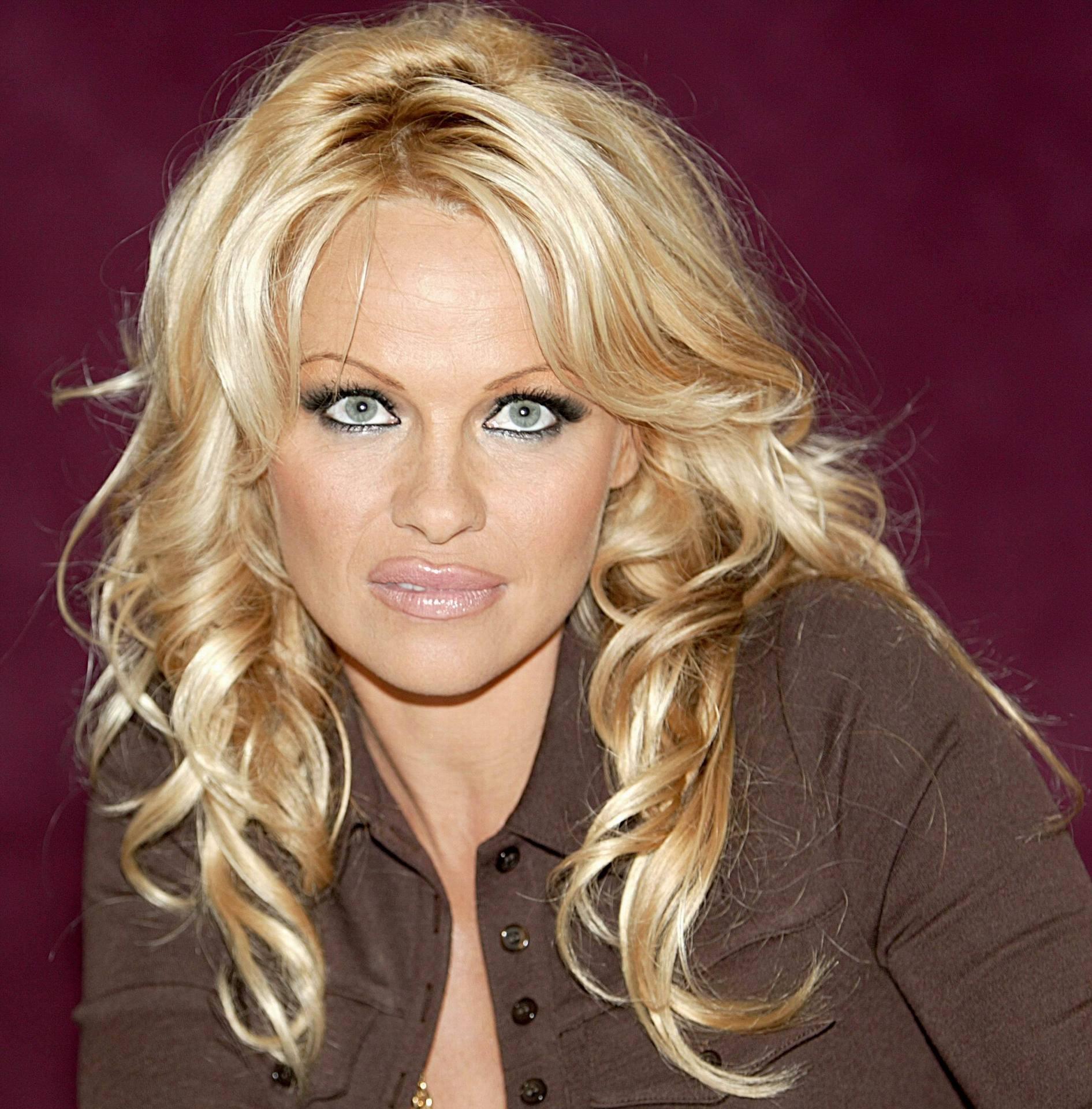 Pamela Anderson - Pamela Anderson Photo (1092504) - Fanpop Pamela Anderson