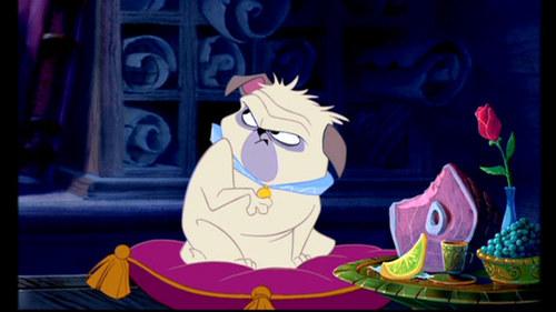 Percy the Pug - Pocahontas