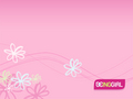 Pink Wallpaper - pink-color wallpaper
