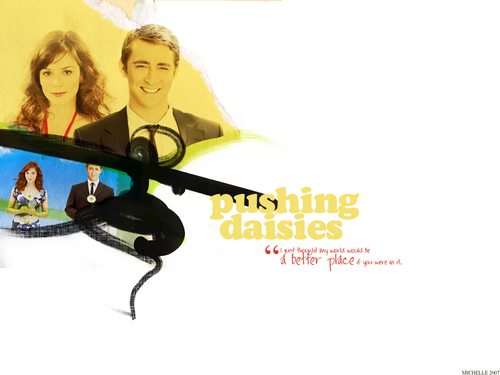 电视 壁纸 called Pushing Daisies