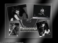 Ramones - the-ramones wallpaper