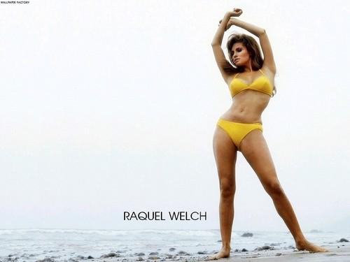Raquel Welch wallpaper called Raquel Welch