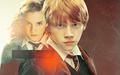 Romione - romione wallpaper