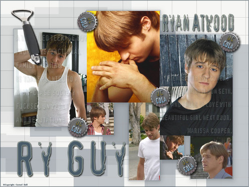 Ryan Atwood wallpaper containing a spatula and a sign entitled Ryan