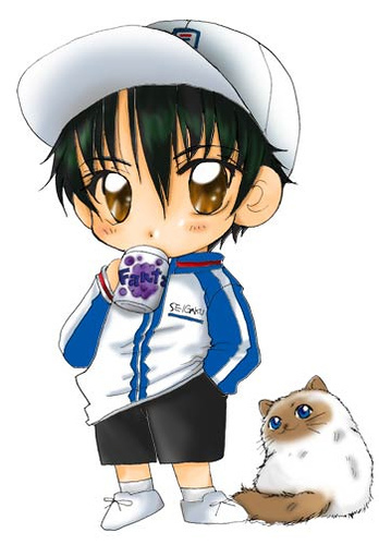 Prince of Tennis wallpaper titled Ryoma Echizen