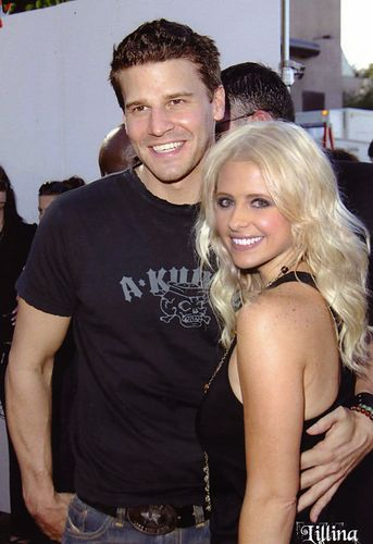 David Boreanaz - David/Sarah Appreciation Thread #19 There ...