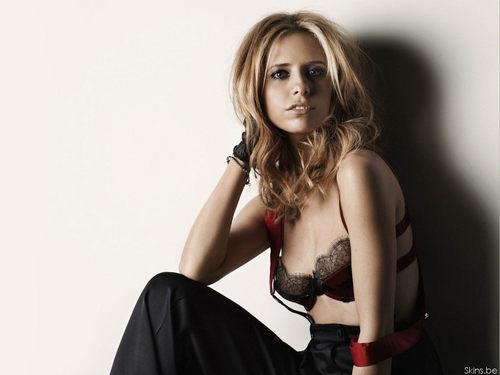 Chloe Sevigny Nude Pics and Videos   Top Nude Celebs