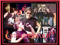 STEPPENWOLF - rock-n-roll wallpaper