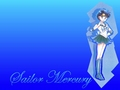 Sailor Moon 14