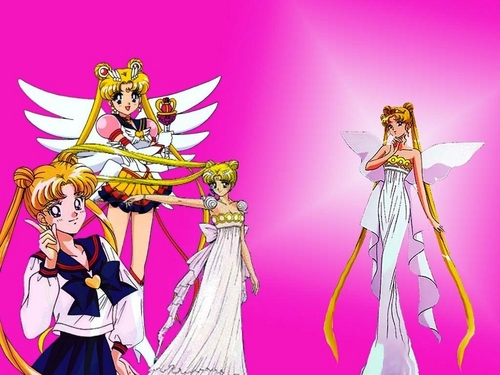 Sailor Moon wallpaper possibly containing Anime titled Sailor Moon 19