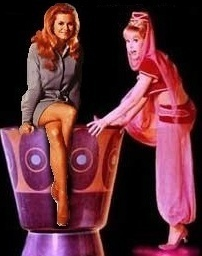 Bewitched wallpaper called Samantha meets Jeannie