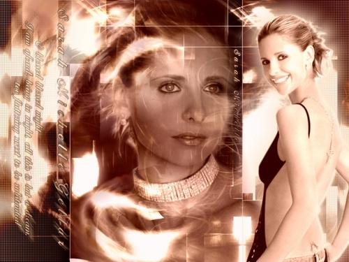 Sarah Michelle Gellar wallpaper entitled Sarah Michelle Gellar