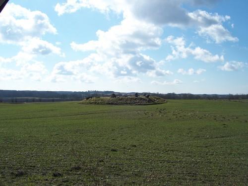 Svedala Countryside